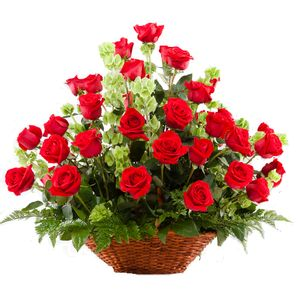 Canasta 48 Rosas Rojas
