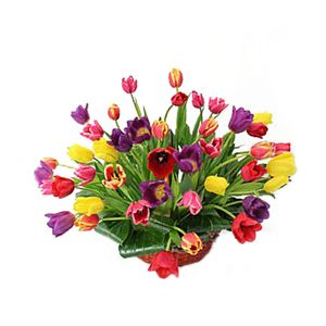 Canasta Tulipanes N. 50