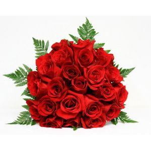 Bouquet de 18 Rosas Rojas