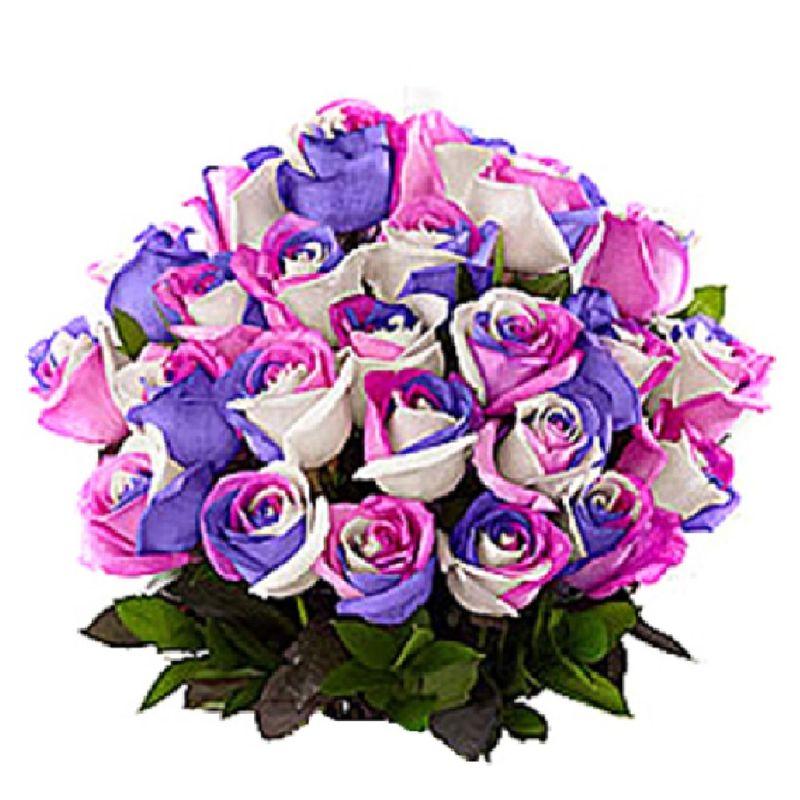 Flores-Rosas-1260-1.jpg