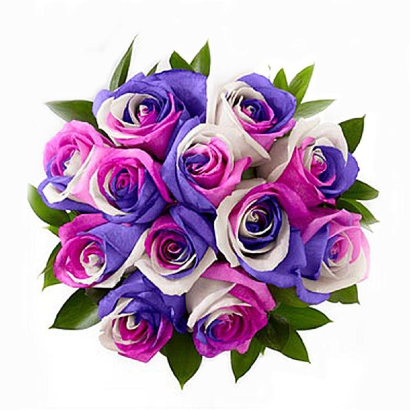 Flores-Rosas-1267-1.jpg