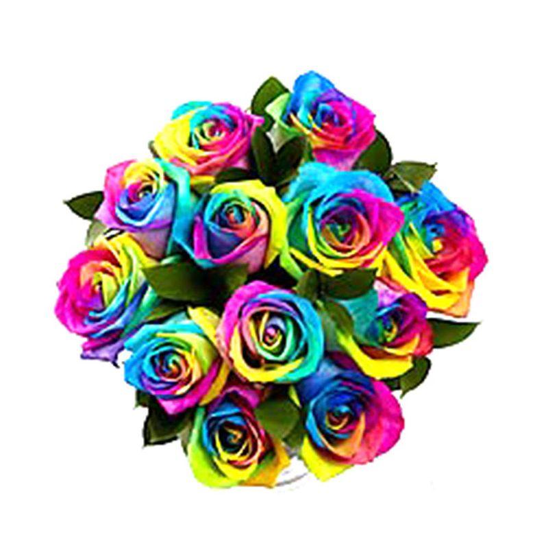 Flores-Rosas-1268-1.jpg