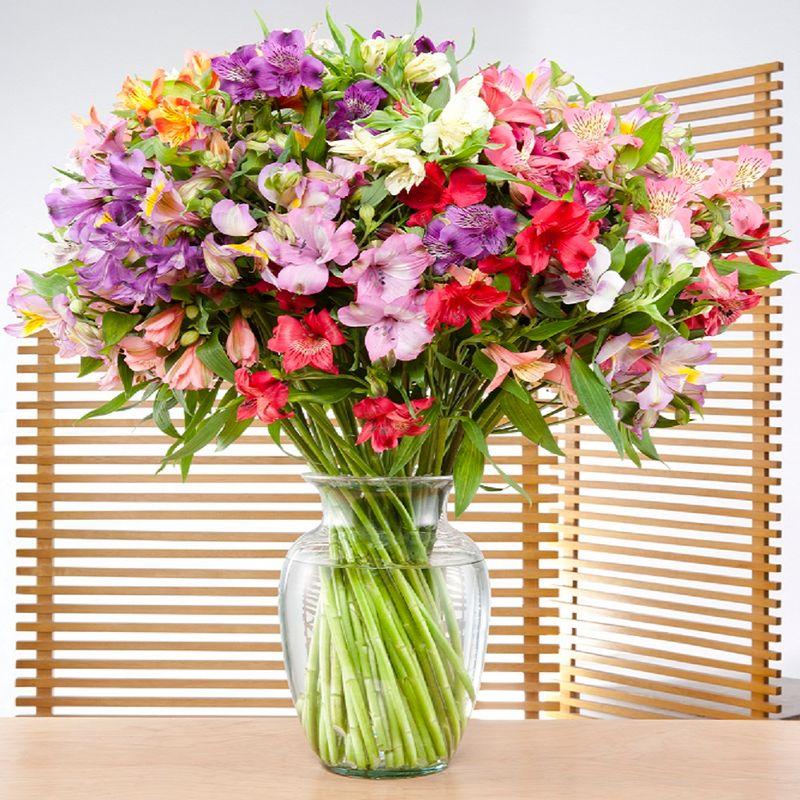 Flores-Alstroemerias-1920-1.jpg