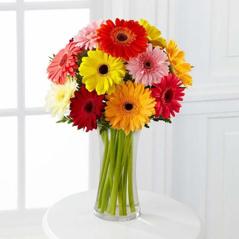 Flores-Gerberas-2026-1.jpg