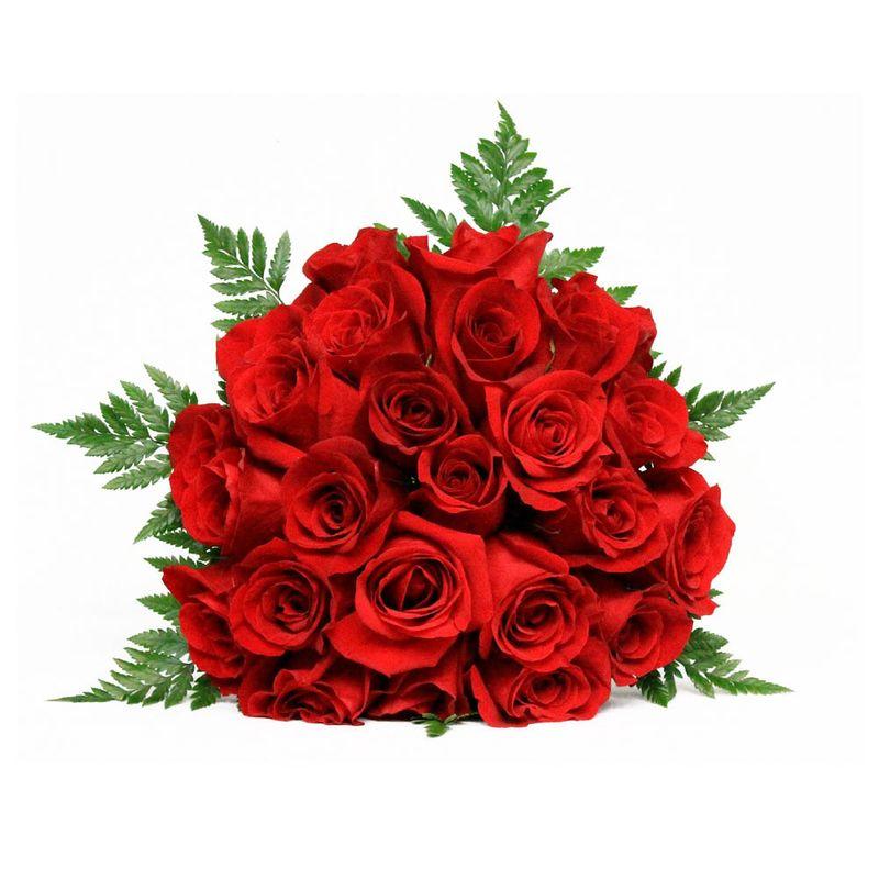 Flores-Rosas-1006-1.jpg