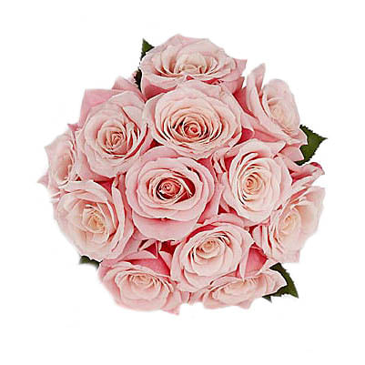 Flores-Rosas-1032-1.jpg
