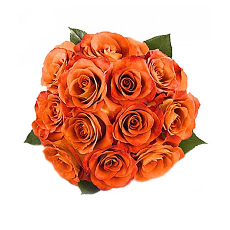 Flores-Rosas-1048-1.jpg