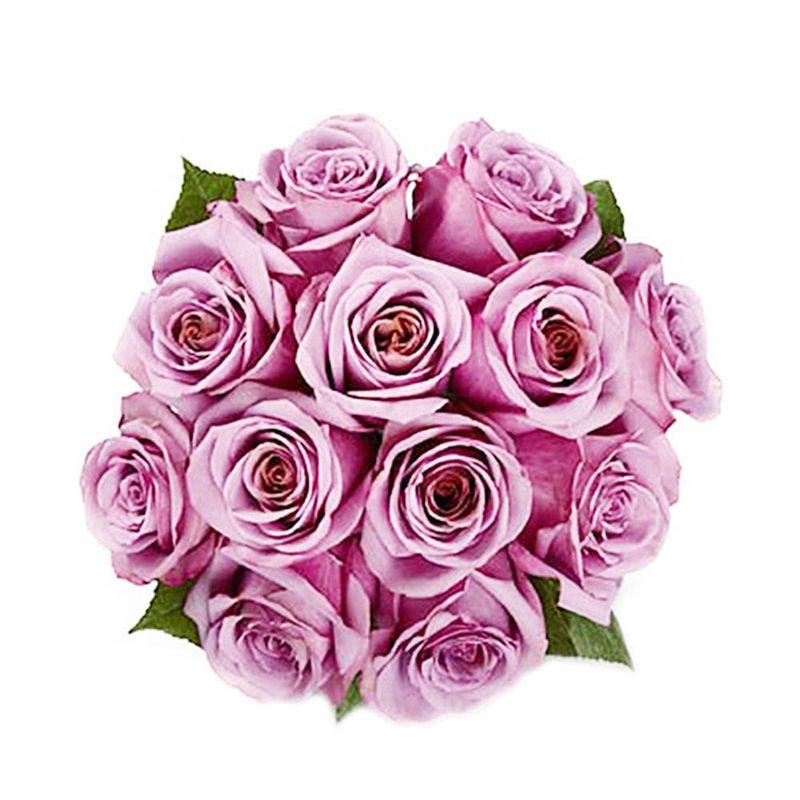 Flores-Rosas-1064-1.jpg