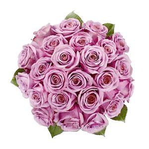 Bouquet de 24 Rosas Moradas
