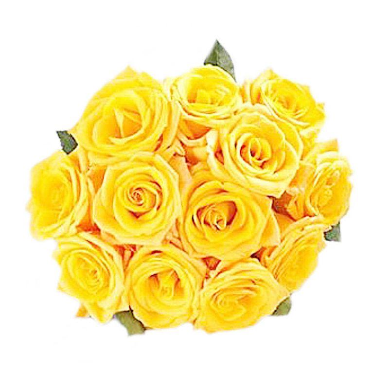 Flores-Rosas-1080-1.jpg