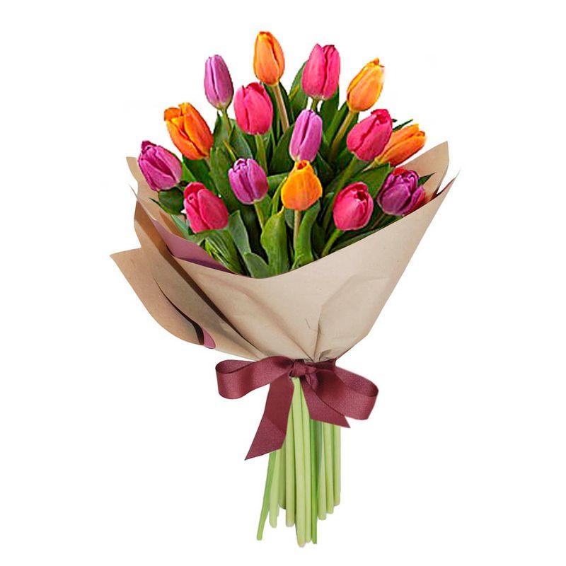 Flores-Tulipanes-1424-1.jpg