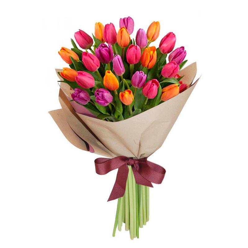 Flores-Tulipanes-1425-1.jpg