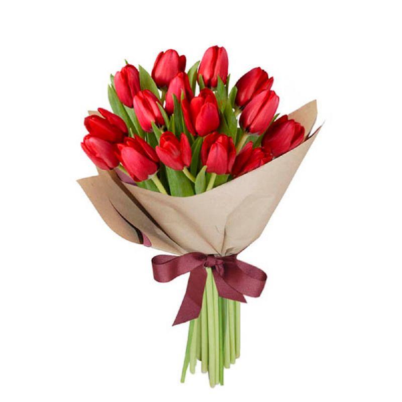 Flores-Tulipanes-1434-1.jpg
