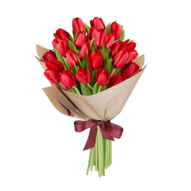 Flores-Tulipanes-1436-1.jpg