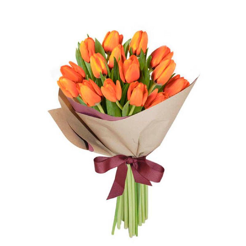 Flores-Tulipanes-1464-1.jpg