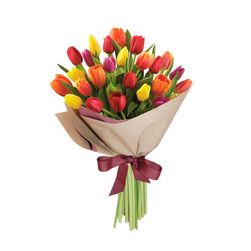 Flores-Tulipanes-1486-1.jpg