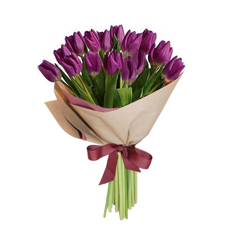 Flores-Tulipanes-1489-1.jpg