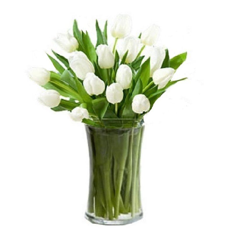 Flores-Tulipanes-2132-1.jpg