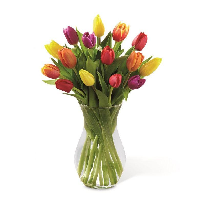 Flores-Tulipanes-2152-1.jpg