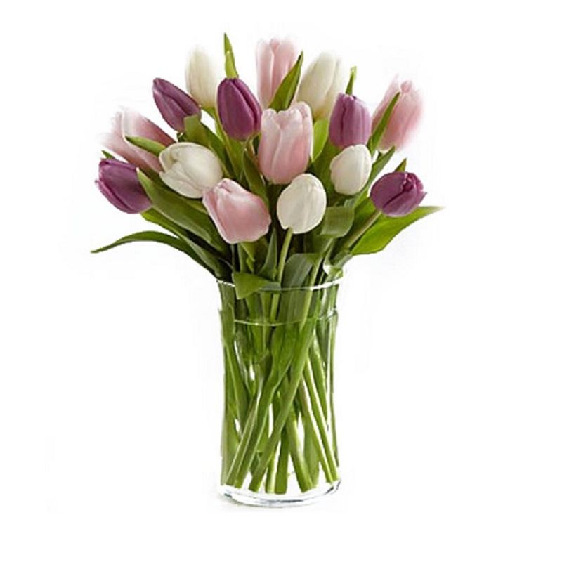 Flores-Tulipanes-2251-1.jpg
