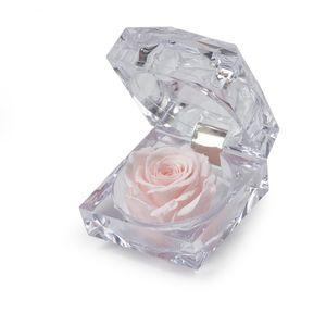 Preservadas Luxury Jewerly Rosado Suave