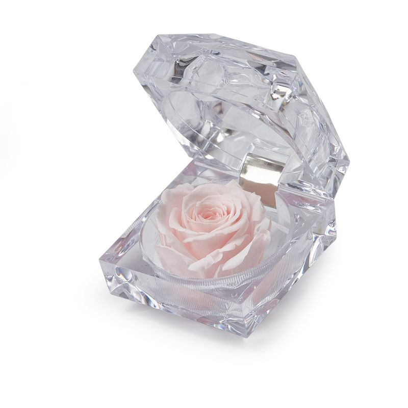 Flores-Rosas-7183-1.jpg